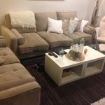 Salon-Upholstery-Cleaning-Saratoga