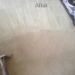 Saratoga-Carpet-Cleaning-Company