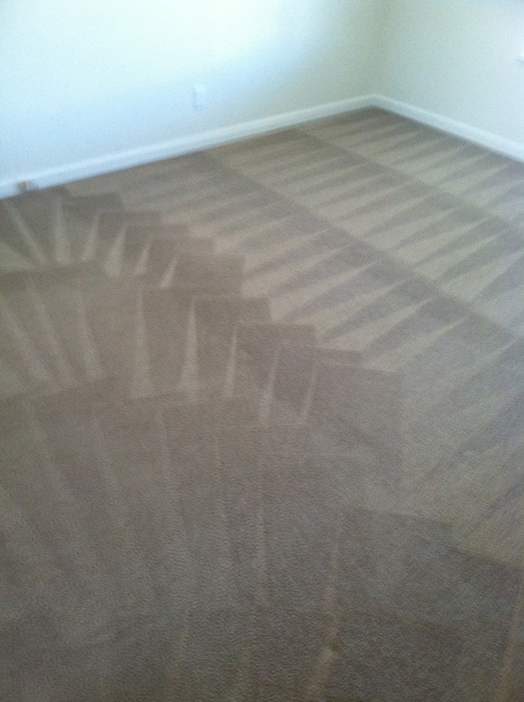 Carpet cleaning saratoga carpet cleaning 408 275 2800 for Wall to wall carpeting
