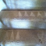 Saratoga-Stairs-Carpet-Cleaning