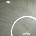 Saratoga-Wine-Stain-Carpet-Cleaning
