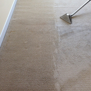 Wall To Wall Carpet Cleaned Saratoga CA