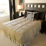 mattress cleaning urine Saratoga